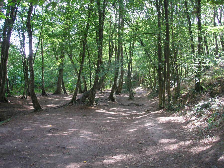7. Les plus beaux spots de randonnée en France pour des vacances inoubliables 2