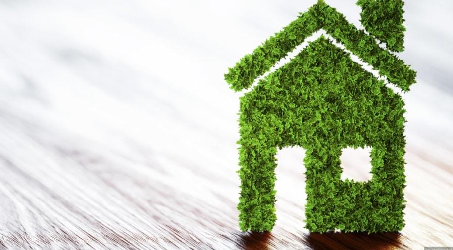Une petite maison verte