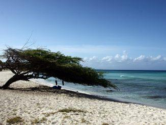 Que faire et que voir en Guadeloupe ?